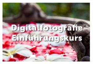Fotokurs für Einsteiger in die Digitalfotografie
